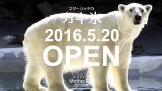 かき氷のマザーリッチ 2016年5月20日OPENです